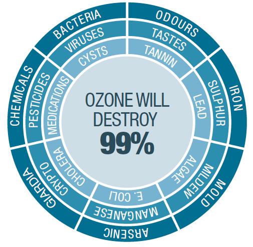 ozone destroys